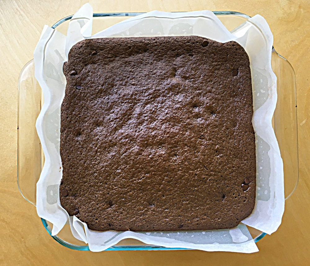 Flourless Frosted Brownies