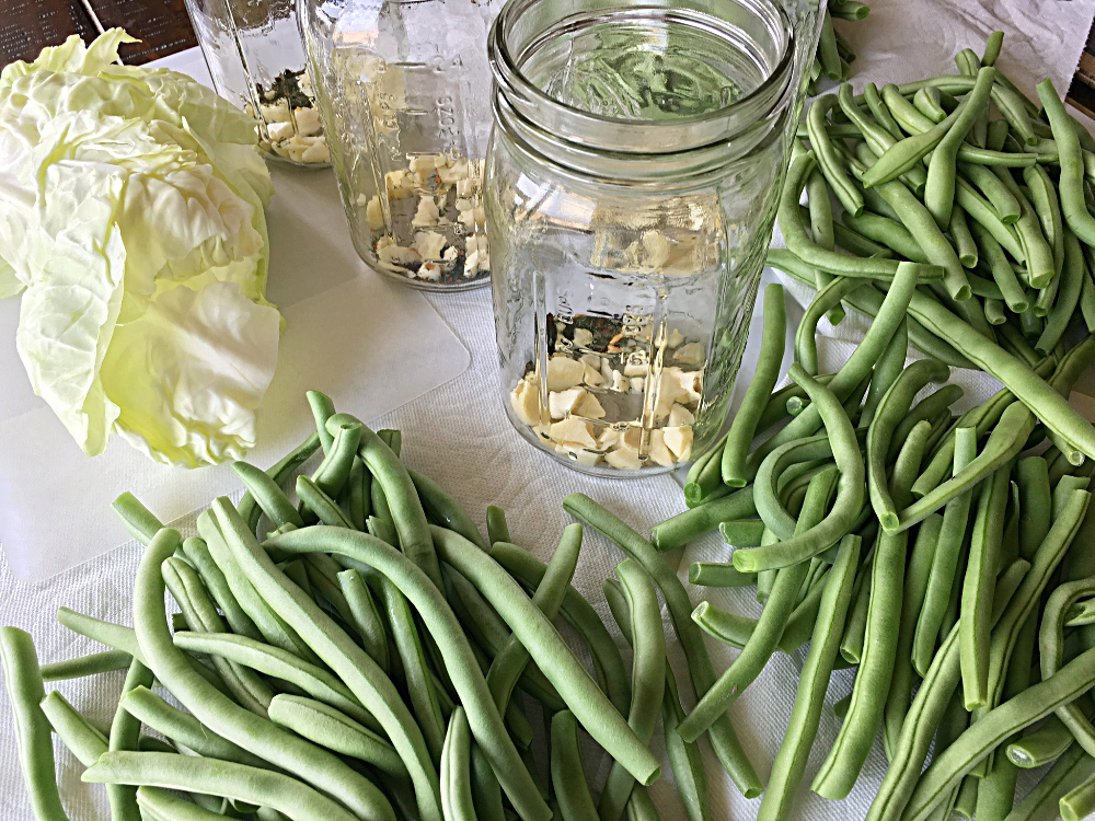 Pickling Naturally : Quart Sized Spiced Fermented Green Beans