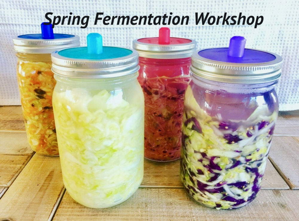 Spring Fermentation Workshop