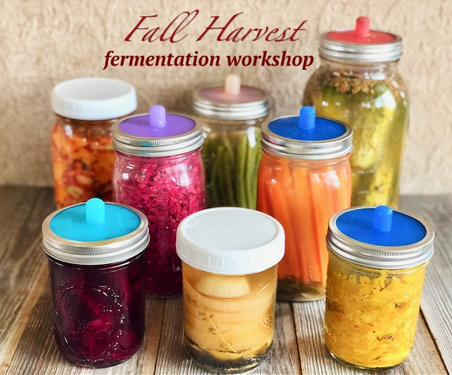 Fall Harvest fermentation workshop